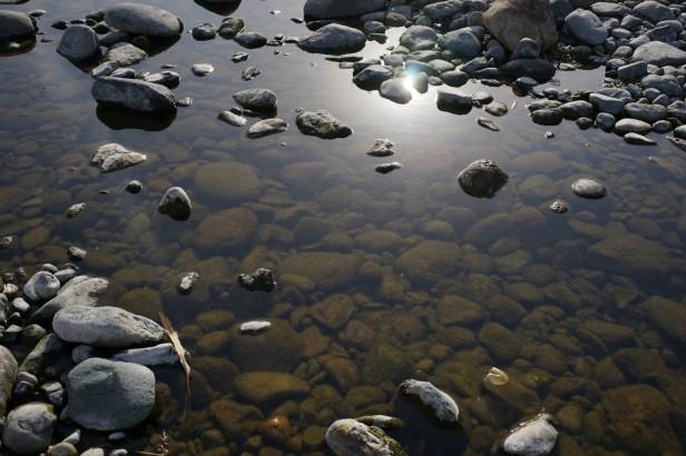 1503相模川の水たまり